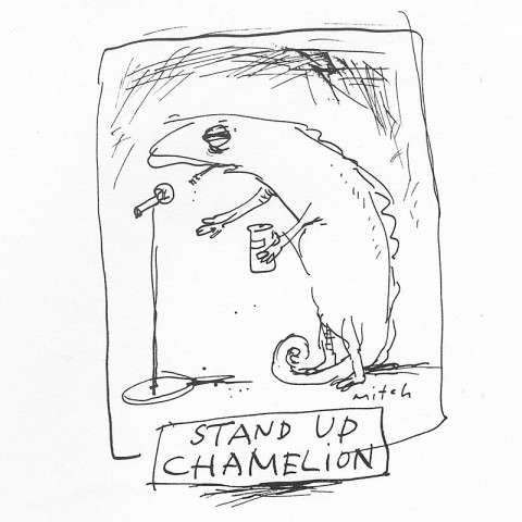 Stand up Chamelion